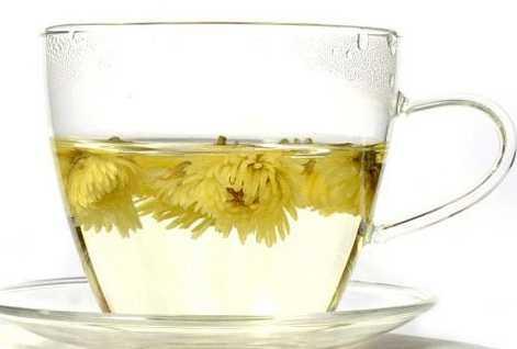 菊花茶和什么相克