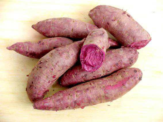 紫薯不能和什么一起吃