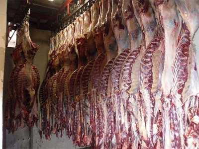 马肉不能和什么一起吃