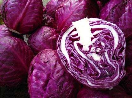 紫甘蓝和什么不能一起吃