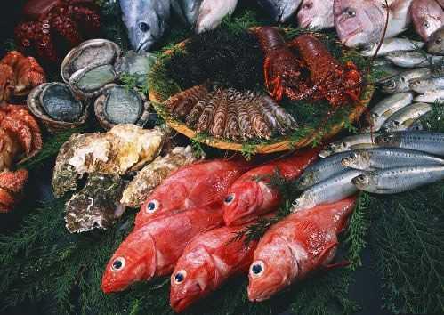 海鱼不能和什么一起吃