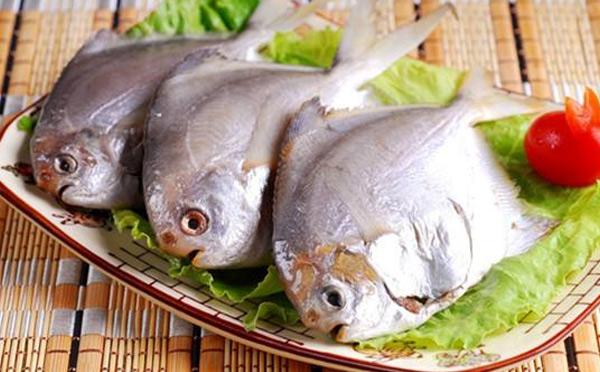 鲳鱼不能和什么一起吃