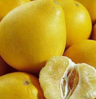 吃柚子有什么禁忌吗图片