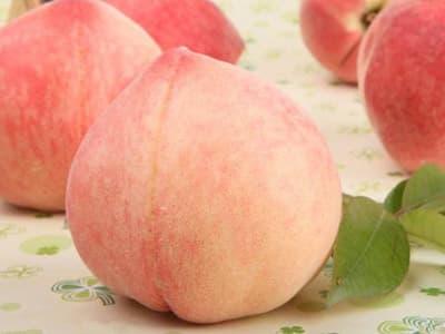 水蜜桃不能和什么一起吃