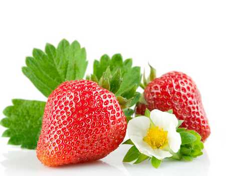 冬季吃草莓有什么功效?