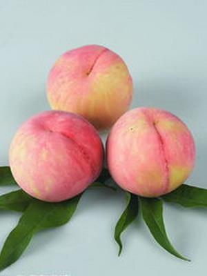 桃子的食疗功效与治病验方