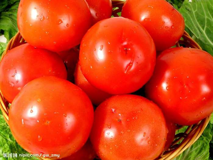 你知道西红柿与什么相克吗?