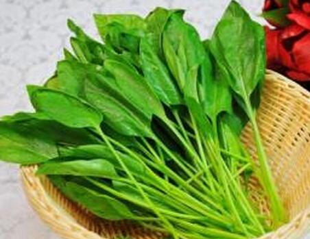 痛风患者小心谨慎食用菠菜