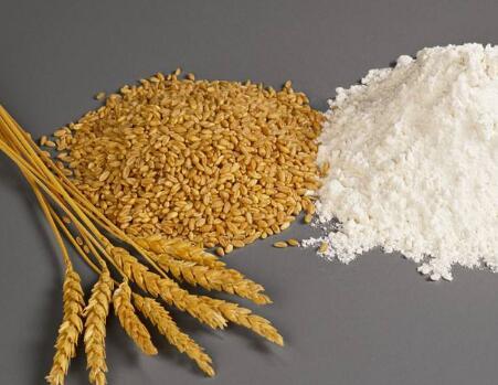 小麦药食两用保健养生