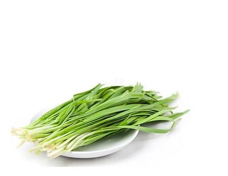 痛风可以吃韭菜 常吃驱走寒气又减轻痛苦
