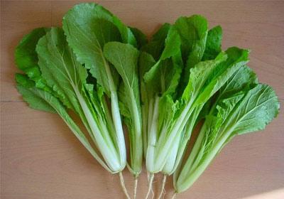 冬季适合吃什么蔬菜 12种绿色蔬菜大盘点