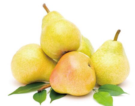 秋季饮食 女人常吃梨有防百病的奇效